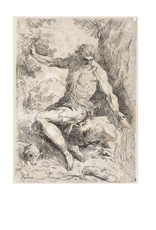 st. john the baptist in the wilderness by jacopo palma il giovane