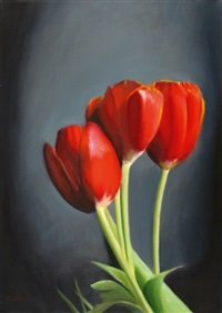 tulips by tzvi abraham
