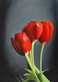 tulips by tzvi abraham