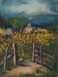 yellow daisies in motueka by mina arndt