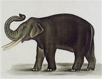 l'éléphant barrissant by la roche laffitte