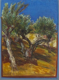 olive grove, extremadura by brian bourke