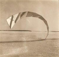 untitled (from centers of contorted spaces, additions, winter square, sea in wide self-made cardboard mats) (7 works) by francisco infante