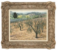 olive trees in tuscany by bennett oates