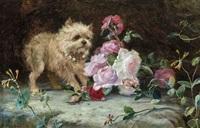 petit chien et fleurs by charles h.d. boland de spa