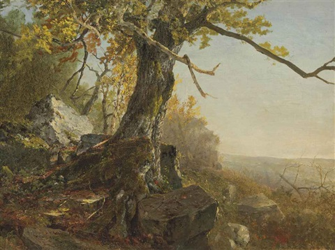 tree in a landscape by john frederick kensett