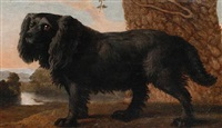 a black spaniel in a landscape by george stubbs