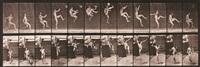 animal locomotion, pl. 366 by eadweard muybridge