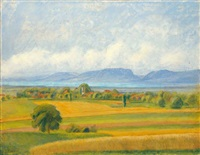 sommerlandschaft (summer landscape) by traugott senn