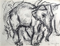 an album of sketches mostly of animals by henry sanders
