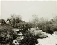 santa ana wash, next to norton air force base, san bernadino county, california by robert adams