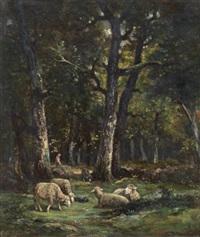 moutons au bord de la forêt by raymond desvarreux-larpenteur