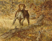 german shorthair by robert kennedy abbett