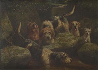 otterhounds by alfred duke