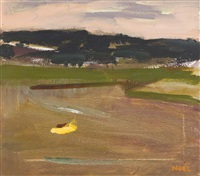 the golden puddle (bog at evening) by noel o'callaghan