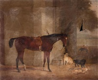 a bay hunter outside a house with a bull terrier, a spaniel and a pair of hounds by james (of bath) loder