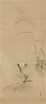 marderhund (tanuki) und riedgras (susuki) bei vollmond by kinpô mochizuki