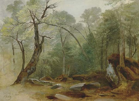 study in the woods by asher brown durand