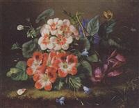 stilleben mit roten und weissen geranien und einer rose by amalie kaercher
