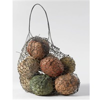 fruit sack (from the installation the country) by sigalit landau