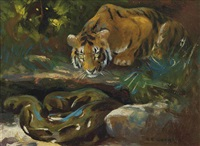 tiger cub and python by cuthbert edmund swan