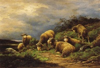 les merinos au paturage by gaston ernest lafenestre