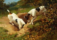 fox terriers chasing a rabbit; gone to earth by alfred duke