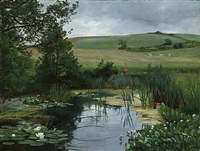 summer landscape with a bog by christian peder mørch zacho