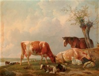 spring: cattle resting by a river by johannes mock