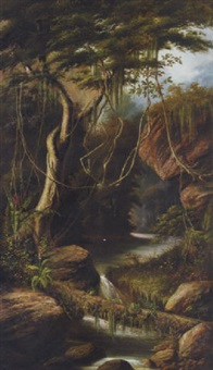 a river in a jungle, south america by j. mill