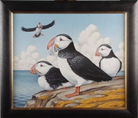 puffins by fred aris