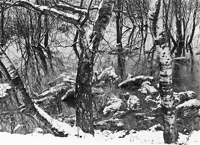 woodland orchard in winter by albert renger patzsch