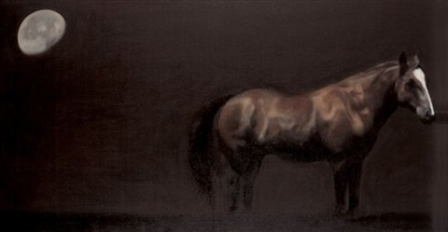 horse by ahmad zakii anwar