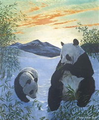 pandas by peter markham scott