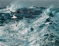rough seas with albatross in flight by keith shackleton