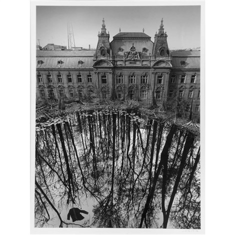 unitled pond and house by jerry uelsmann