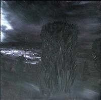 notturno by silvano d' ambrosio