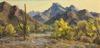saguaro land by bill freeman
