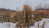 bulrushes in november (highway #14 east, alta) by joseph (or joe) ferenc acs