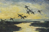 mallards in flight by peter scott