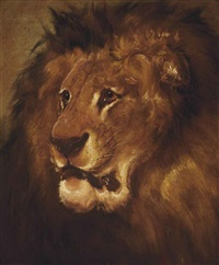 study of a lion by william huggins