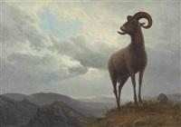 long horned sheep by albert bierstadt