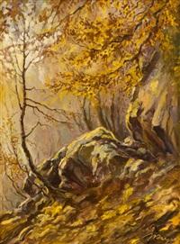 lesní zákoutí u husince by josef krejsa