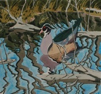 wood duck by neil welliver