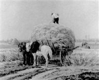 recogiendo la cosecha by f. martinez