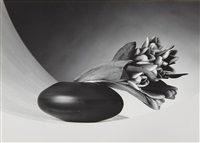 tulips ('just to thank you') by robert mapplethorpe