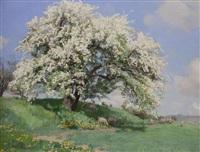 obstblüte (schafherde im frühling) by georg macco