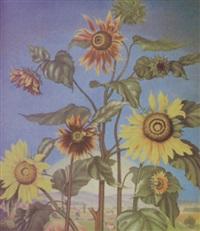 sonnenblumen by heiner baumgärtner