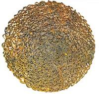 sunflower by olu amoda
