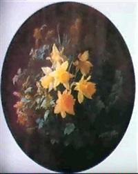 daffodils by ove haase